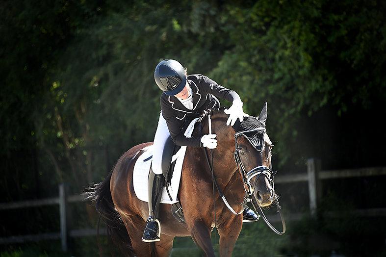 Compétitions équestres
